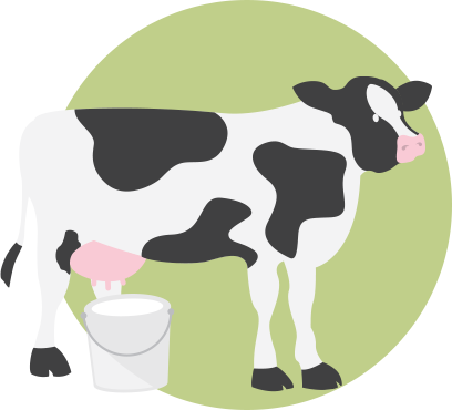 Cow and bucket illustration